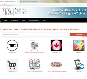 Best Practices Resources for Language Training